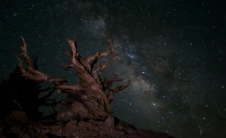 Spettacolare , Panoramiche Notturne delle Nostre Stelle
