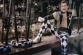 """Video DvdiV – VideoClip , della Grande """" Living On My Own """" di Freddie Mercury"""