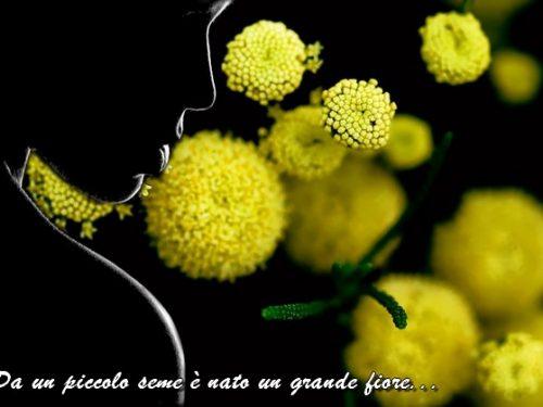 DvdiV – 2016 : Auguri Donne per un FELICE e Sereno  8 Marzo !!