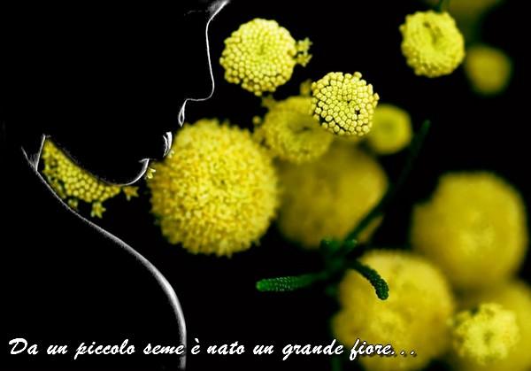 2016 Auguri Donne per un FELICE e Sereno 8 Marzo !!