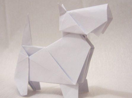 Video DvdiV – Funny , Arte dell' Origami per Creare un Classico Dog