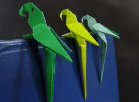 Video DvdiV – Funny , Arte dell' Origami per Creare un Macaw Parrot