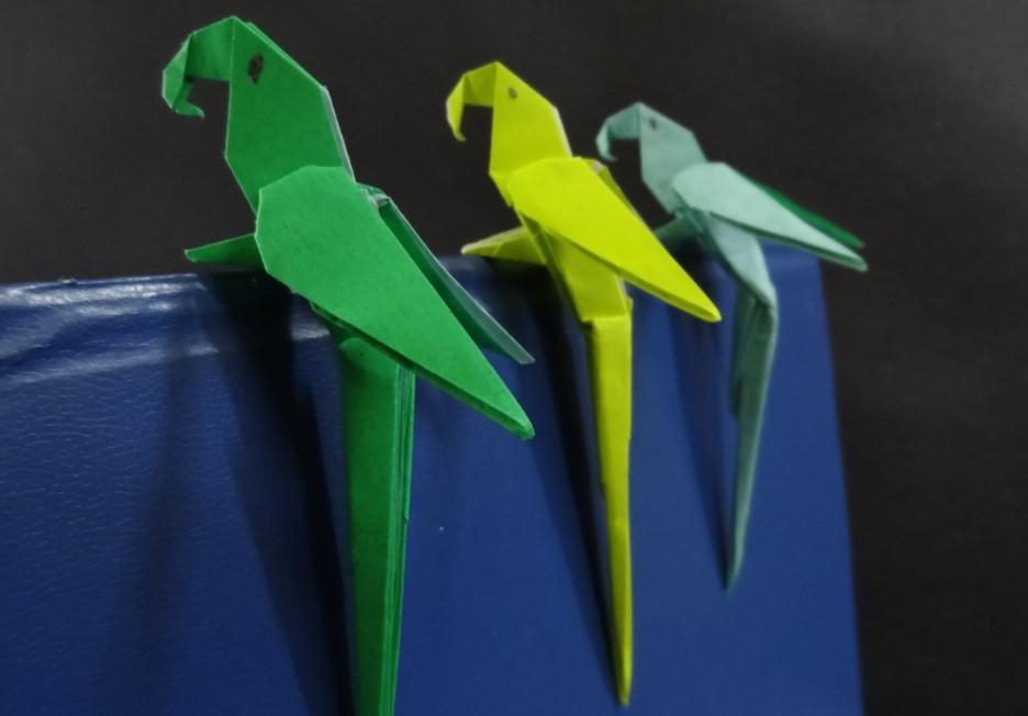 Funny , Arte dell' Origami per Creare un Macaw Parrot