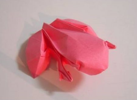 Video DvdiV – Funny , Arte dell' Origami per Creare una Rana ( Ranoshi )